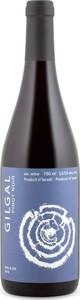 Gilgal Pinot Noir Kp 2013, Kosher For Passover, Non Mevushal, Galilee Bottle