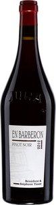 Domaine André Et Mireille Tissot En Barberon Pinot Noir 2013 Bottle