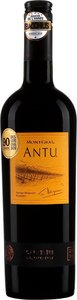 Carmenere Antu Vina Montgras Santa Cruz 2014 Bottle