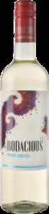Bodacious Pinot Grigio Bottle