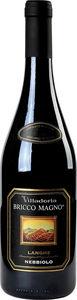 Villadoria Nebbiolo D'alba Bricco Magno 2013 Bottle