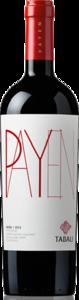 Tabalí Payen 2012 Bottle
