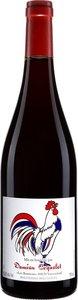 Damien Coquelet Gamay Vin De France Nouveau 2017 Bottle