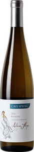 Cave Spring Riesling Adam Steps 2016, VQA Beamsville Bench Bottle