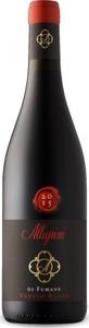 Allegrini Di Fumane Rosso 2016, Veneto Bottle