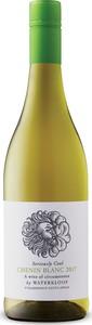 Waterkloof Seriously Cool Chenin Blanc 2017, Wo Stellenbosch Bottle