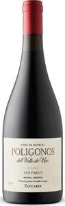 Zuccardi Polígonos 2016, San Pablo, Uco Valley, Mendoza Bottle