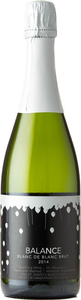 Niagara College Balance Blanc De Blanc Brut 2014, St. David's Bench Bottle
