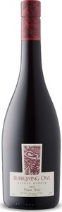 Burrowing Owl Pinot Noir 2017, BC VQA Okanagan Valley Bottle
