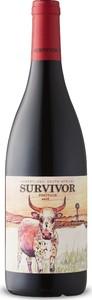 Survivor Pinotage 2018, Wo Swartland Bottle