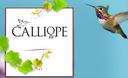Calliope Wines